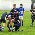 Minis & Youth registration