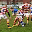 Fylde 29 Bishop's Stortford First XV 22
