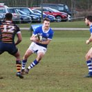Old Albanian 36 Bishop's Stortford First XV 16