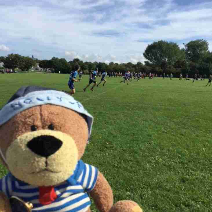 Holly May the Girl Guide bear visits Hull Wyke