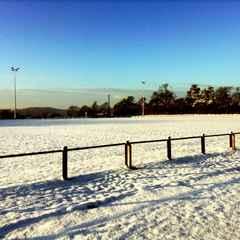 Training & Matches 17/01/16 Postponed