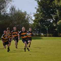 Mellish Rugby Club Are Looking For New Players