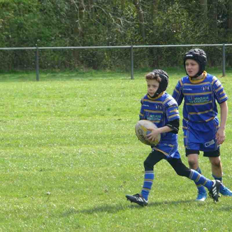 CROSFIELD U8 VIPERS V WSJ 020417
