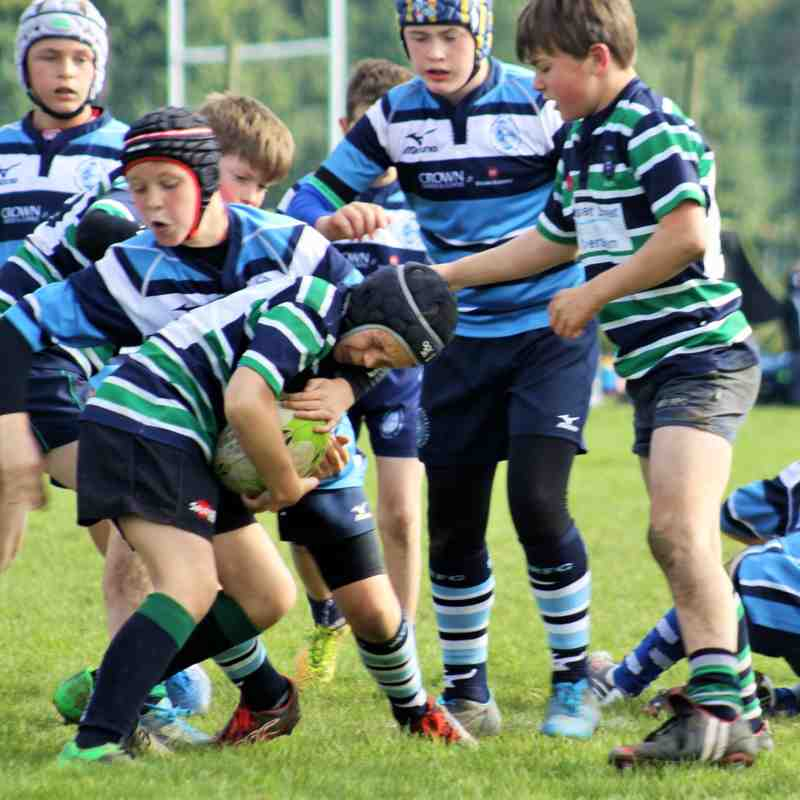 ABBEY U13'S @ READING RFC FESTIVAL 11/10/15