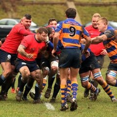 Dover Sharks RFC 1XV vs Gosport & Fareham RFC 1XV
