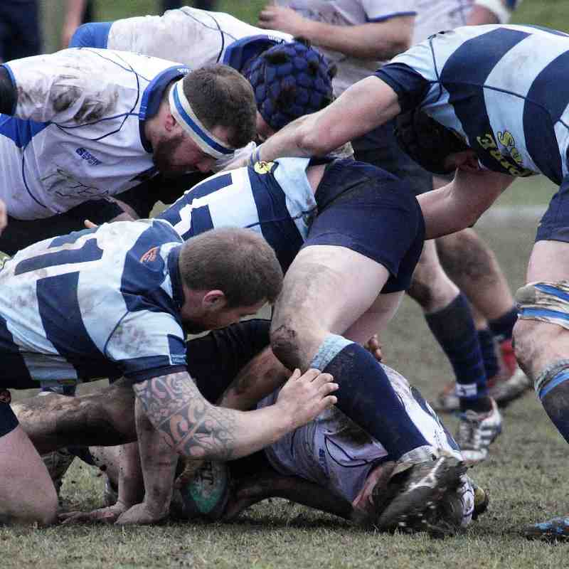 Brighton RFC 1XV vs Dover Sharks RFC 1XV