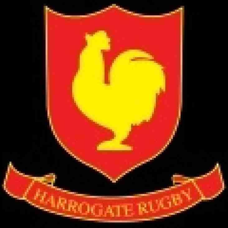 Harrogate Preview