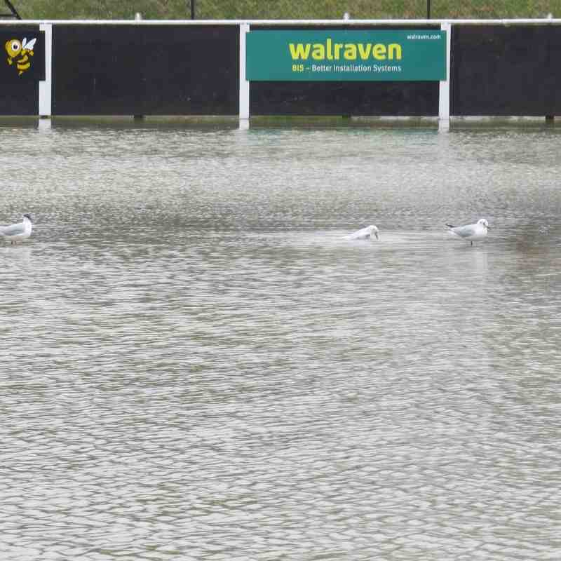 A Wet Spencer Stadium - 10th March 2016