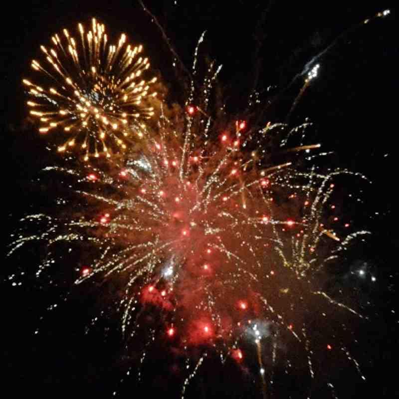Firework Extravaganza 2013.