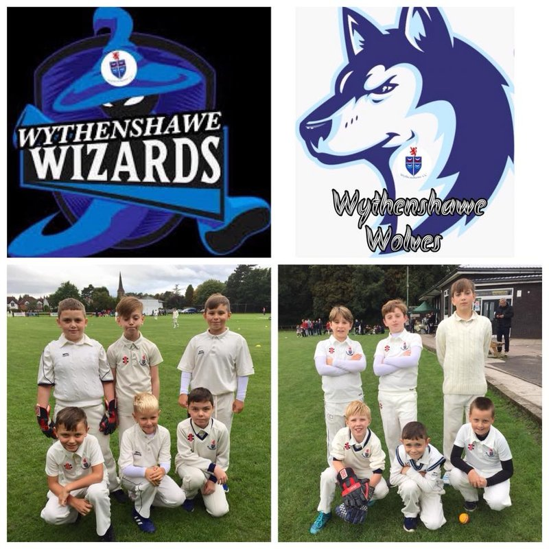Season ends for Wizards & Wolves playing some promising cricket