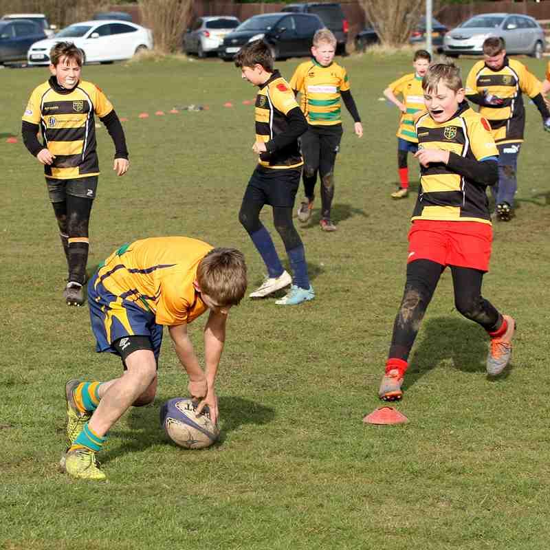 Retford Rugby Club U11 v Amber Valley RC