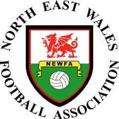 Wellmen reach NEWFA Challenge Cup Final