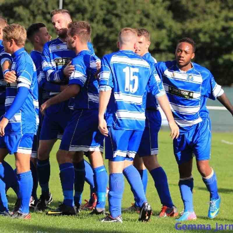 Epsom & Ewell FC v Bedfont Sports FC 2013/14 (Home)