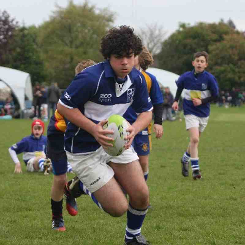 BSRFC U12's at Chelmsford Festival 2014