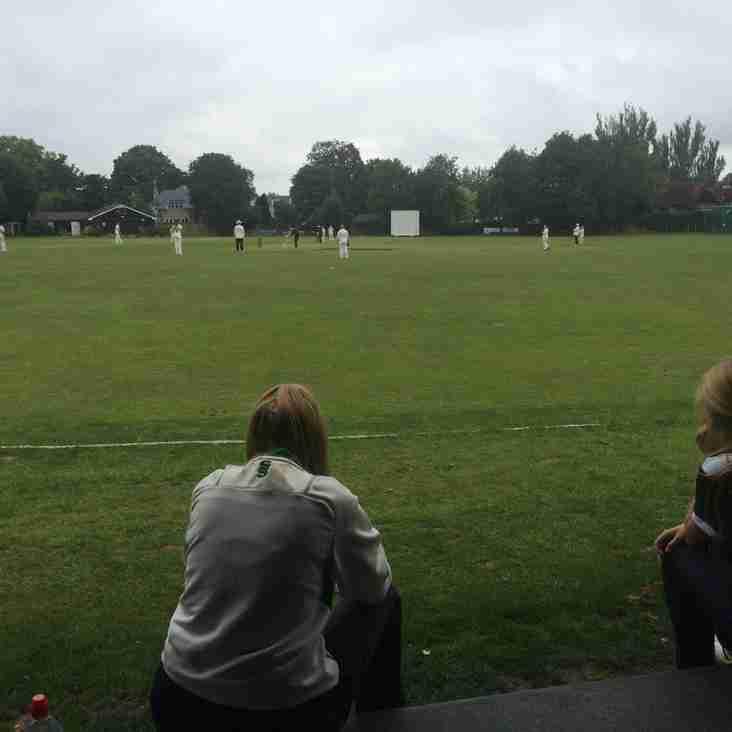 T20 Ladies cricket