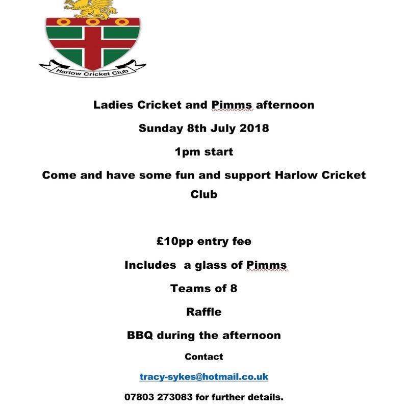 Ladies Cricket & Pimms Afternoon