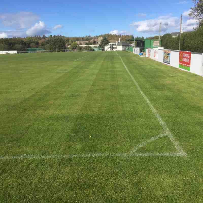 The green green grass of Llay