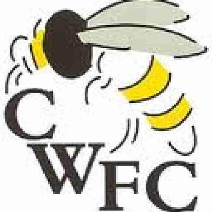 Wasps Stung By Witney