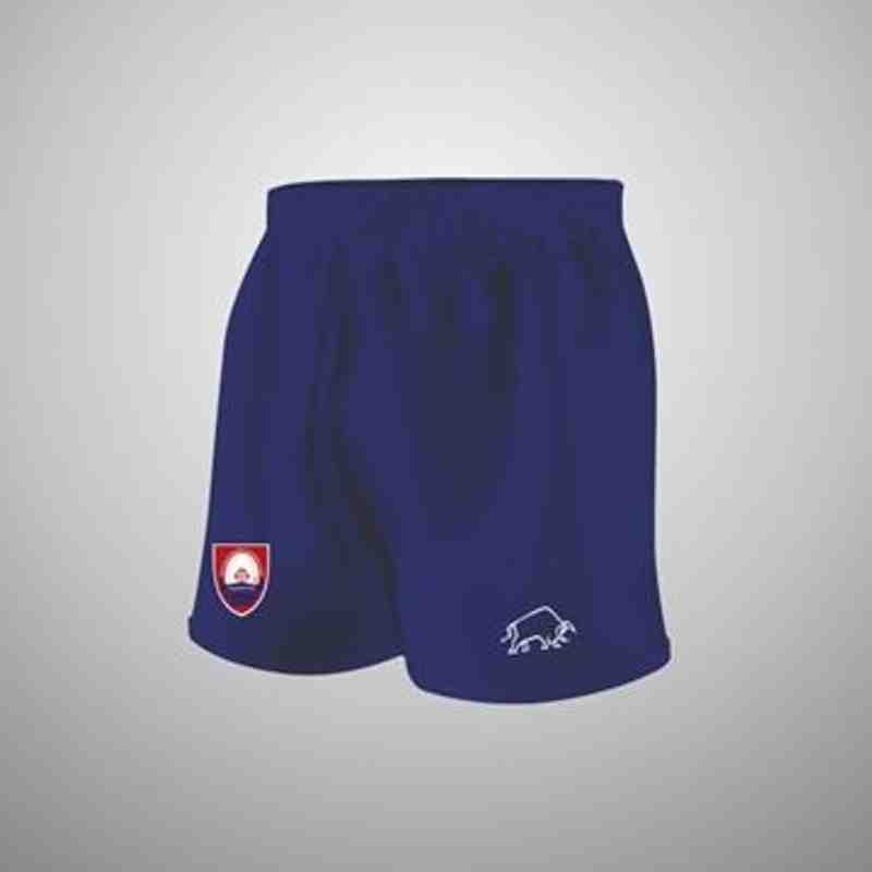 Junior/Mini Match Day shorts