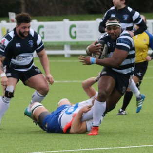 86 Point Thriller at Stourton Park