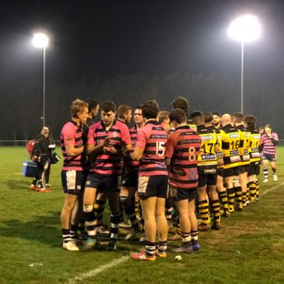 Lions Go Down at Droitwich