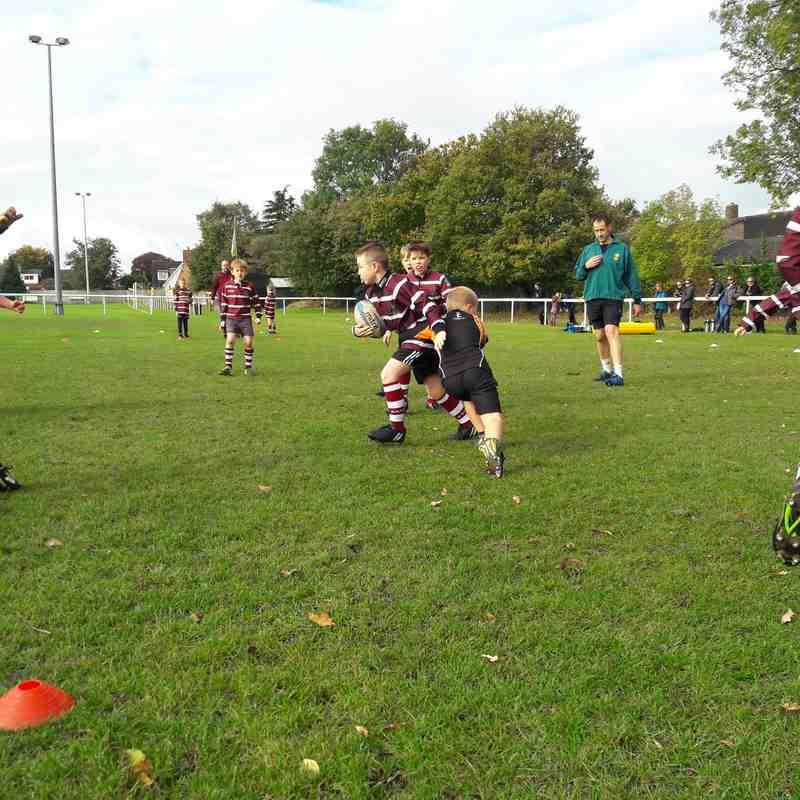 U9's vs Newcastle (Home) - 8th Oct 17