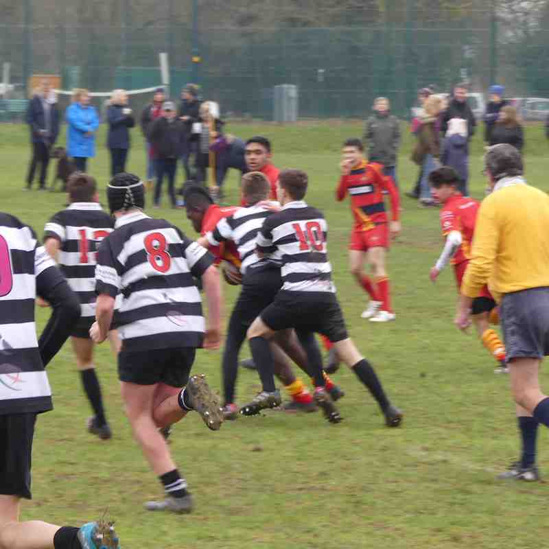 Royston v Cambridge January 18