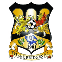 Three Bridges Youth U14