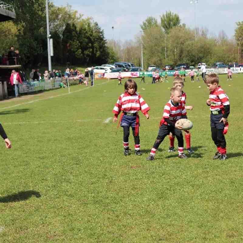 under 7's Preston grasshoppers tournament