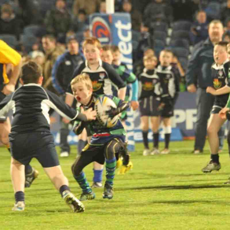 U12 - Leinster vrs Zebra ½ time game
