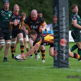 Johns leads the Bees to victory