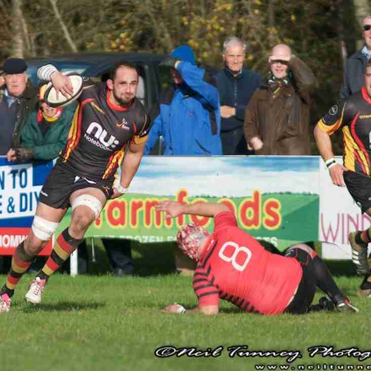 Bees look to bounce back at Newbold on Avon