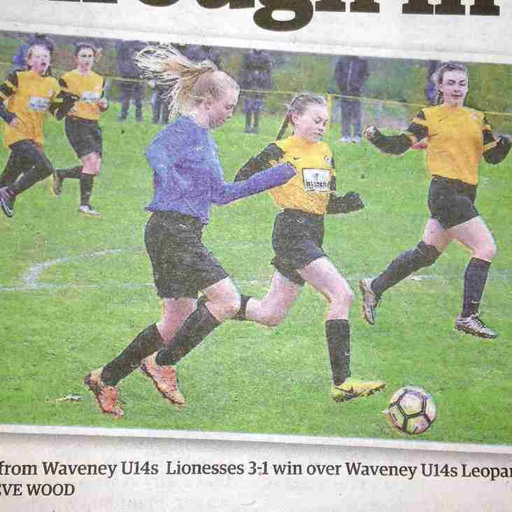 U14 Lionesses and U14 Leopards in the EDP