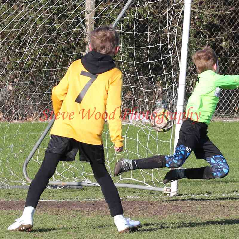 Waveney U9 Lions v Waveney U9 Snow Leopards