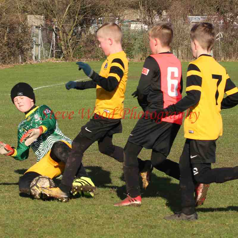Waveney U9 Cheetahs v Gorleston Rangers Ospreys U9's