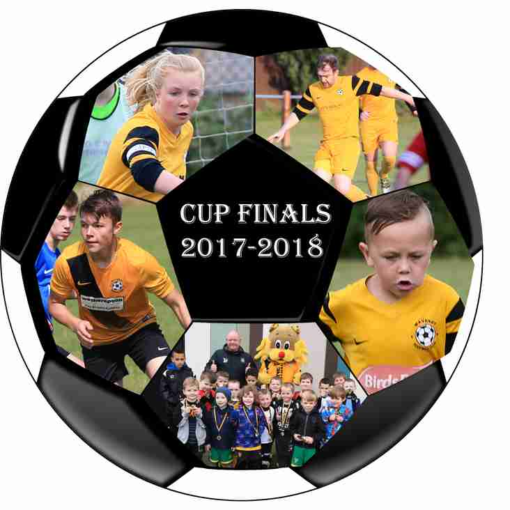 Waveney Youth Cup Finals (Provisional)