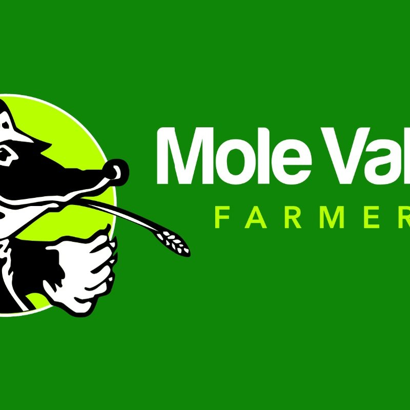 Saturday 14th Jan Wadebridge Camels Sponsors day with Mole Valley Farmers.