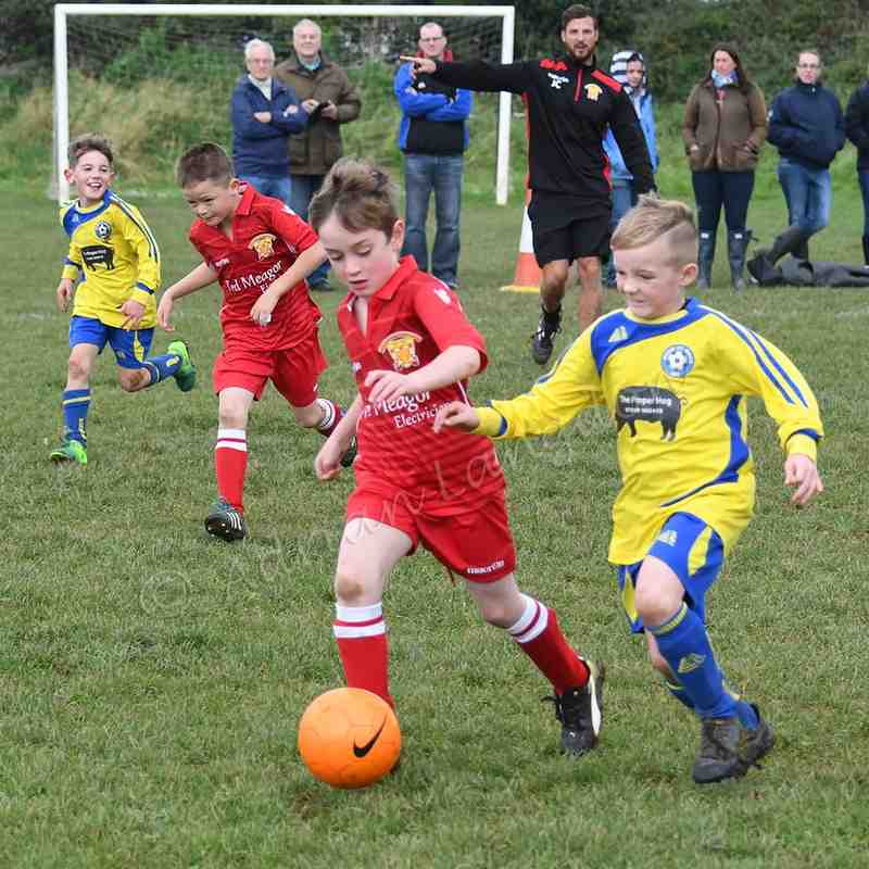 Wadebridge Town FC Under 8's match action