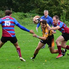 Camels v Bude. Cornwall Cup, 13.10.18