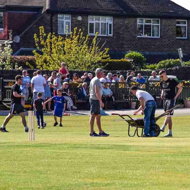 Bank Holiday Cricket At Tofts Rd
