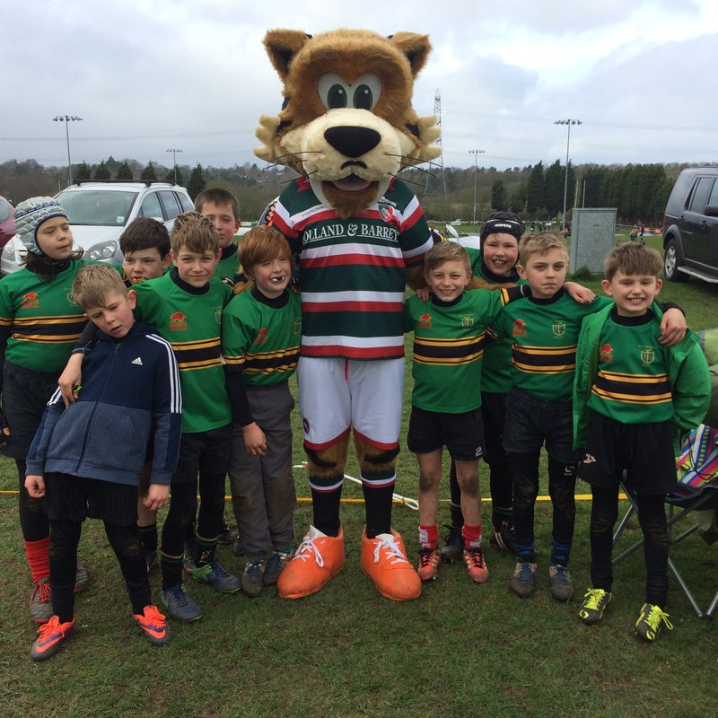Great Rugby Festival for under 9's at Lichfield