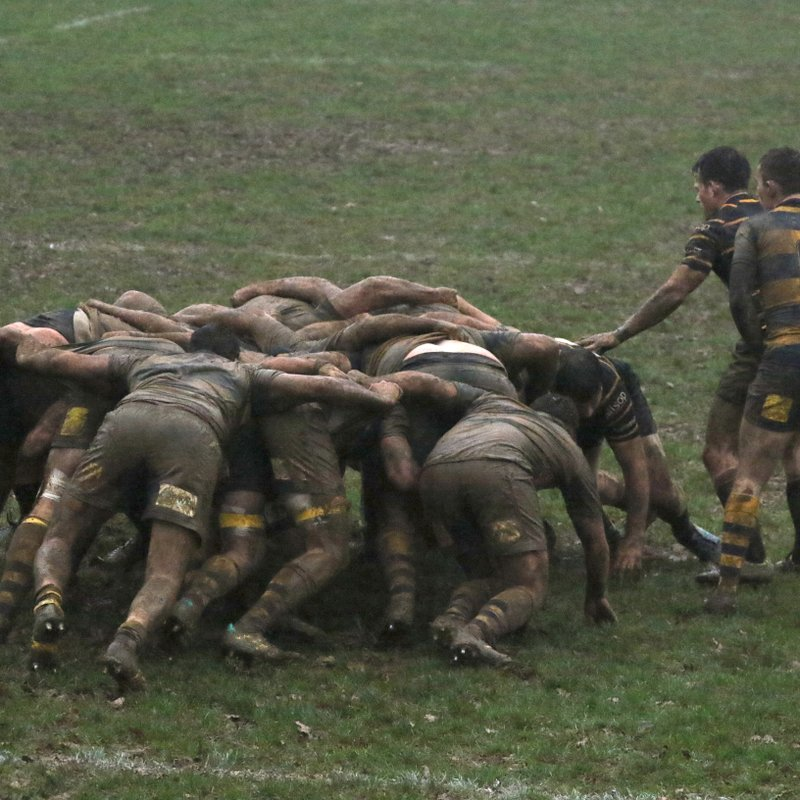 Cornish Provide the Test, But Oaks Up to the Task!