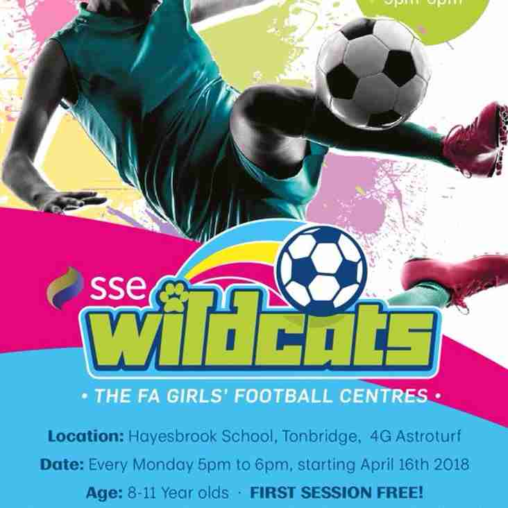 Tonbridge Wildcats Girls Football Club