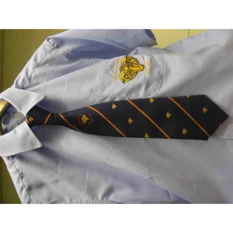 Club Blue Tie