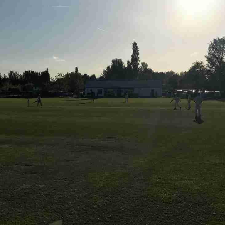 All Stars Cricket Begins!!