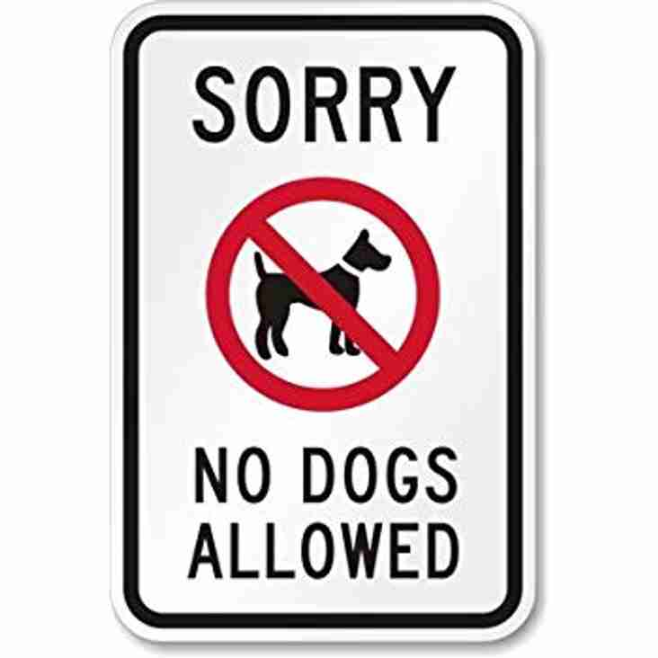 Please no dogs allowed at the cricket club