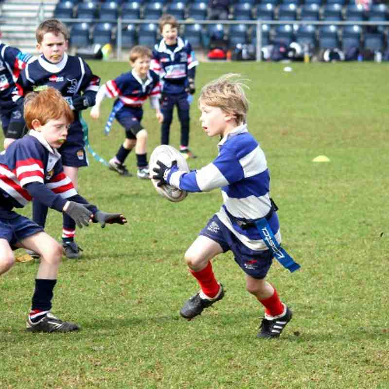 Doncaster Festival Of Rugby - Under 8's - 21/03/2010