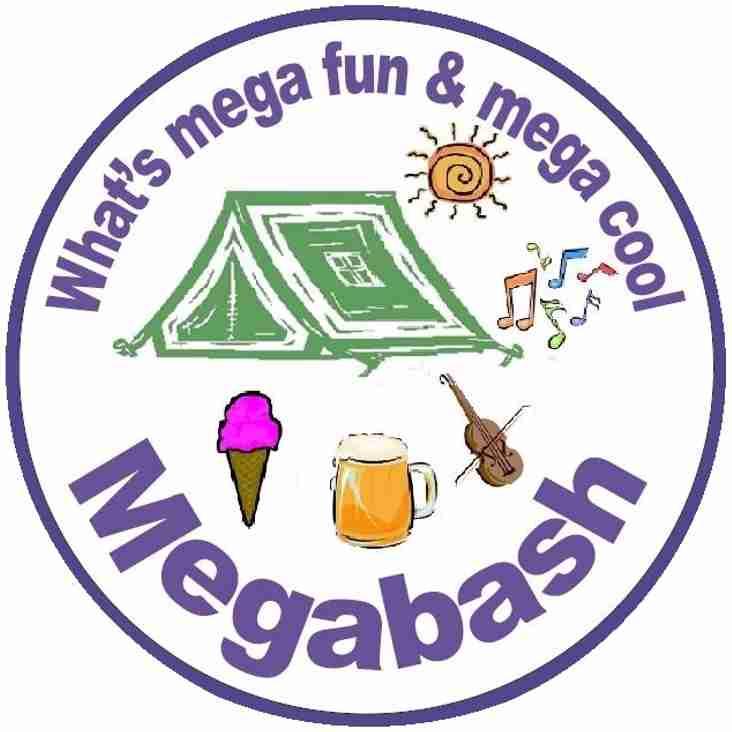 Megabash Survey