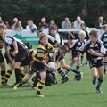 All goes 'Wells' for Hornets U13's