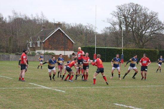Cranleigh 1st XV v Bec Old Boys (Surrey Shield)